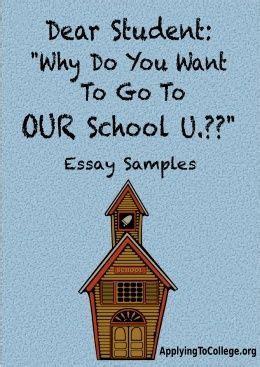 Get That Bursary! Efficient Scholarship Essays at Ease